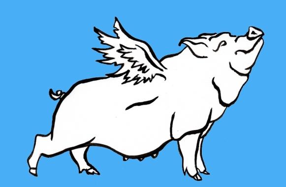 Porkbelly's Pigasus