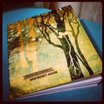 Vein of Stone (Sarah McCartt-Jackson) open edition cover
