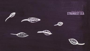 Strangest Sea (Ariana D. Den Bleyker) cover artist: Nicci Mechler