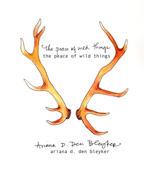 The Peace of Wild Things by Ariana D. Den Bleyker (cover: Jonathan Rountree & Nicci Mechler)