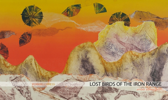 Lost Birds of the Iron Range by Amber Edmondson (cover: Mary Woodworth)