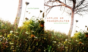 Apples or Pomegranates (cover art: Anita Olivia Koester)