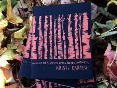 Daughter Shaman Sings Blood Anthem (Kristi Carter) cover: Nicci Mechler